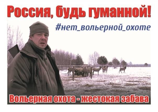 Плакат, с которым Дмитрий Белоусов пекитировал консульство РФ